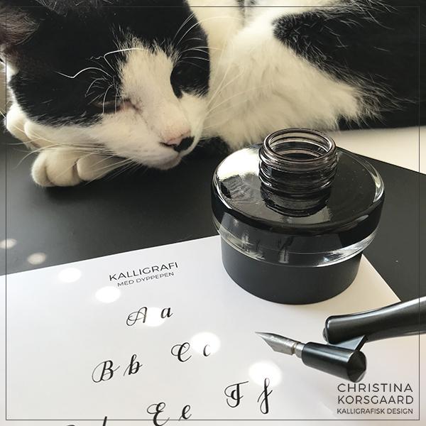 Lær kalligrafi med dyppepen - inkl. øveark